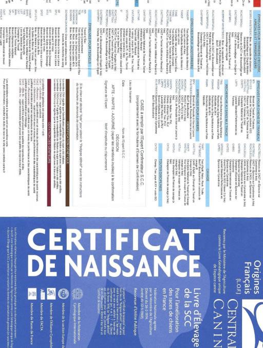 certificat-de-naissance